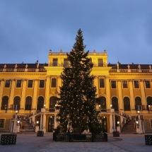 csm_baum-weihnachtsmarkt-schoenbrunn-c-fotofally_4afbcd9755